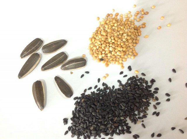 Khẩu phần ăn chính là các loại hạt