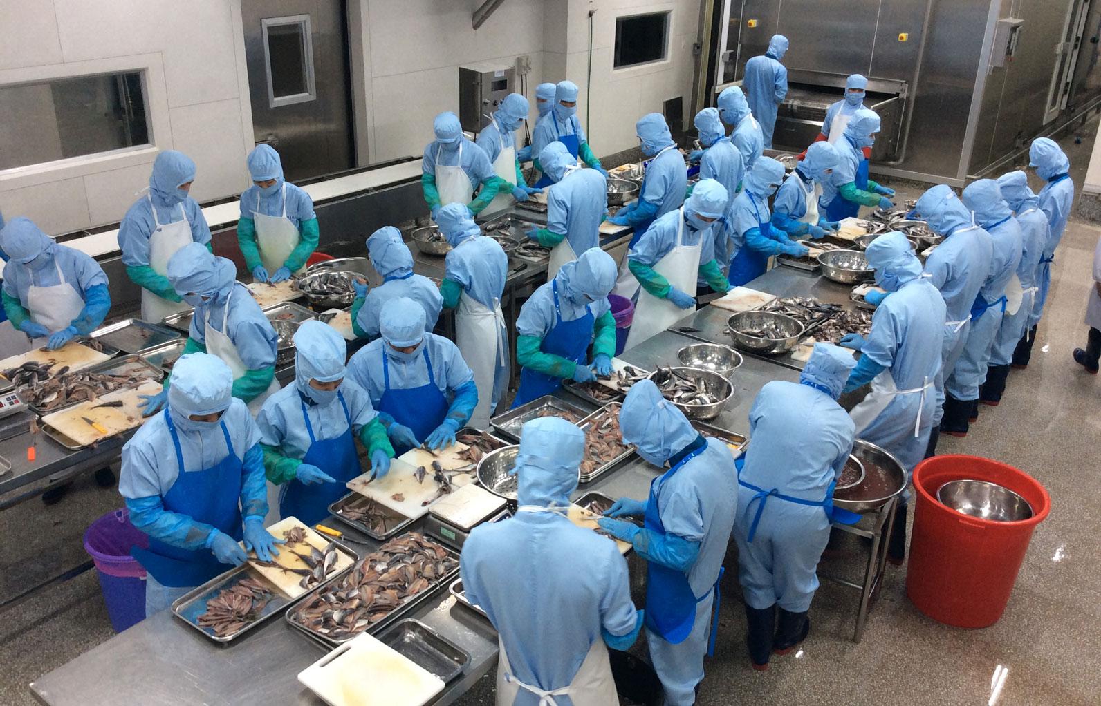 Công nhân làm đêm tại khu công nghiệp Đà Nẵng