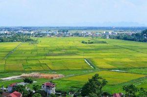 Tìm hiểu cụ thể bhk là đất gì? Đất BHK khác gì đất CLN?